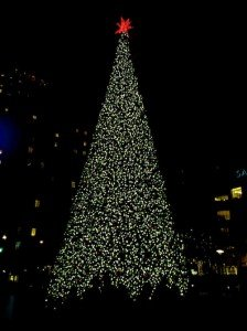 SF-Christmas-Tree-10