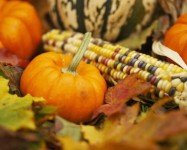 October events for families in our neighborhood