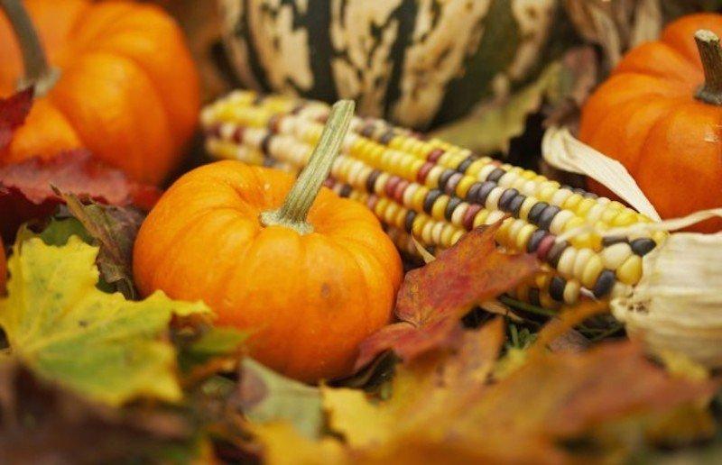 pumpkin-corn-620x400 copy