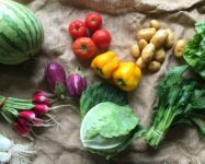 Registration open for DUMBO CSA