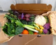 Registration for Brooklyn Heights CSA open