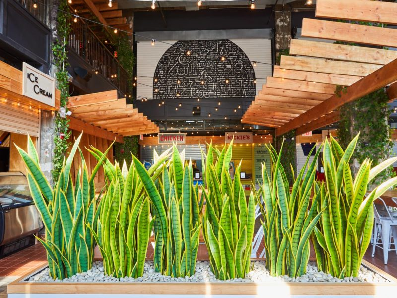 Hill Country Food Park now open in Downtown Brooklyn