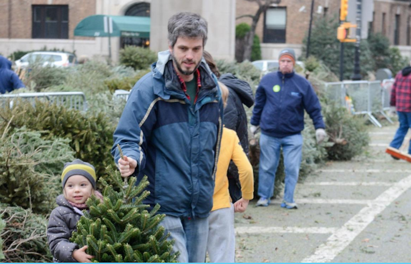 Recycle your Christmas tree in the neighborhood